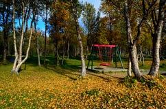 有操场摇摆集合的充满活力的秋天森林 库存照片