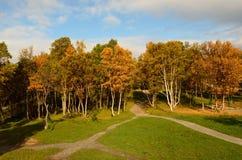 有操场摇摆集合的充满活力的秋天森林 免版税库存图片