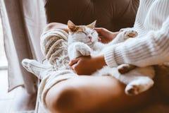 有放松在沙发的猫的女孩 免版税库存照片