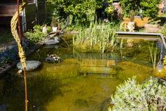 有放松的长凳和一点池塘的美丽的庭院 免版税库存图片