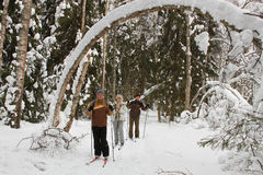 有效的组滑雪者 免版税库存照片