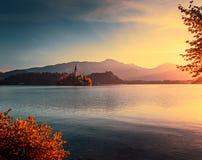 有教会的一点海岛在流血的湖,斯洛文尼亚秋天Sunri 免版税库存图片
