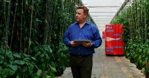 有数字片剂审查的植物的科学家自温室4k 股票录像
