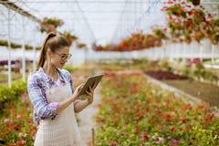 有数字片剂的俏丽的年轻女人在花园里 免版税库存图片
