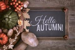 有文本空间的与秋天装饰,文本黑板 库存图片