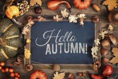有文本空间的与秋天装饰,文本黑板 免版税库存图片