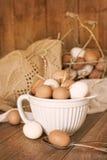 有斑点的鸡蛋 库存照片