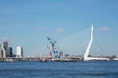 有斗牛士2浮船的Erasmus桥梁在前面 荷兰鹿特丹 库存图片