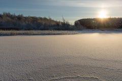 有新鲜的下落的雪的湖 免版税库存照片
