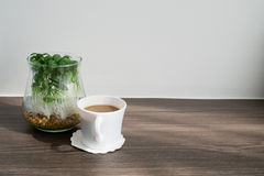 有新鲜的咖啡杯的,在玻璃花瓶的矮小的树办公桌和 库存图片