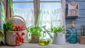 有新鲜的春天菜的充分的厨房 免版税库存照片