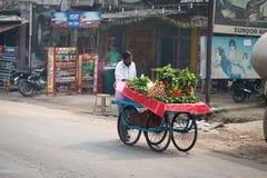 有新鲜蔬菜的印第安移动摊贩 免版税库存图片