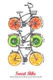 有新鲜水果轮子的水彩自行车 背景五颜六色的例证夏天向量 库存照片