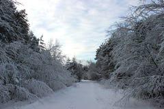 有方式的积雪的国家 图库摄影