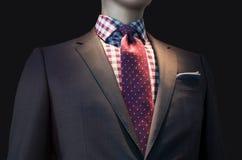 有方格的衬衣和红色领带的布朗夹克 库存图片