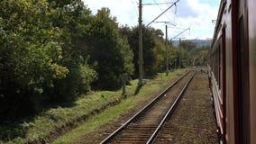 有旅行在轨道的红色支架的火车在林木线附近 铁路运输和旅行的概念 股票视频