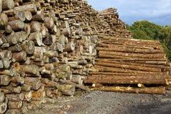 有日志的木围场 免版税库存照片