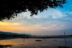 有日落天空的Lotus湖 免版税库存照片