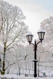 有早午餐的街道灯笼在雪美好的冷的冬日 库存图片