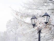 有早午餐的街道灯笼在雪美好的冷的冬日 免版税库存图片