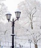 有早午餐的街道灯笼在雪美好的冷的冬日 免版税图库摄影