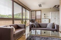 有时髦的家具的明亮的客厅 免版税库存照片