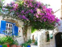 有明亮的九重葛的传统街道在希腊 免版税库存照片