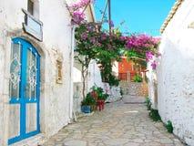 有明亮的九重葛的传统街道在希腊 图库摄影