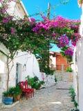 有明亮的九重葛的传统街道在希腊 免版税库存图片