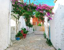 有明亮的九重葛的传统街道在希腊 库存照片