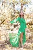 有明亮的构成的美丽的性感的女孩女王/王后在有一个冠的一件长的礼服在他的顶头busick在明亮的晴朗的s的森林里走 库存图片