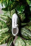 有星装饰品的白色运动鞋由假钻石做成在背景反对植物的杂色的叶子 免版税库存照片