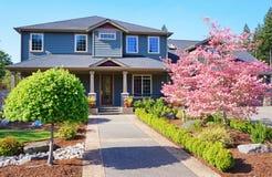 有春天粉红色结构树的灰色豪华房子。 图库摄影