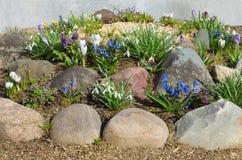 有春天花的装饰花圃 免版税库存图片