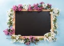 有春天花的黑板 免版税图库摄影