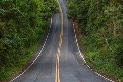 有曲线和双重黄色林的美丽的山柏油路 免版税库存照片