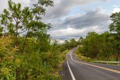 有曲线和双重黄色林的美丽的山柏油路 免版税库存图片