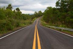 有曲线和双重黄色林的美丽的山柏油路 图库摄影