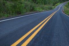 有曲线和双重黄色林的美丽的山柏油路 库存图片