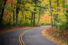 有曲线的路通过秋天森林在威斯康辛 库存照片