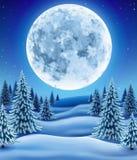 有月亮的冬天森林 库存图片