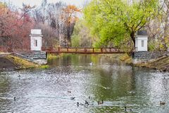 有有一座红色桥梁的一个池塘和鸭子和反射和五颜六色的树在秋天 免版税图库摄影