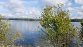 有有树的美丽的湖在前景 免版税库存图片