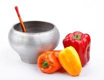有木匙子和杂色胡椒的生铁罐 图库摄影
