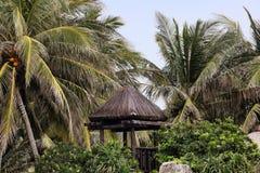 有木城楼的热带庭院在海南岛 图库摄影
