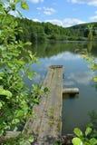 有木板走道的小湖在森林附近在春天 免版税图库摄影