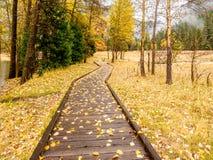 有木板走道的草甸优胜美地国家公园谷的秋天 免版税库存照片