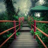 有木桥和亭子的神奇有雾的森林 库存照片