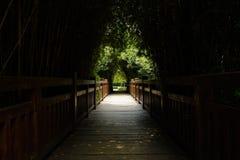 有木楼梯栏杆的遮荫planked道路在晴朗的su的竹子 免版税库存照片