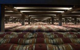 有木橡木桶的葡萄酒库 库存图片